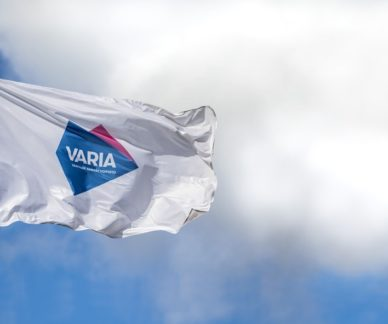 Flag with Varia's logo